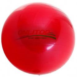 мяч гимнастический d= 55 см 650г